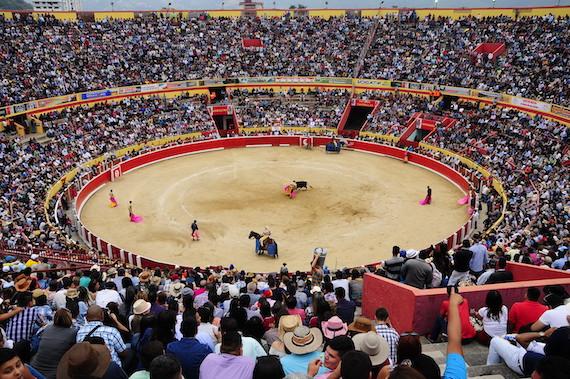 Incierto panorama para primeras ferias taurinas venezolanas