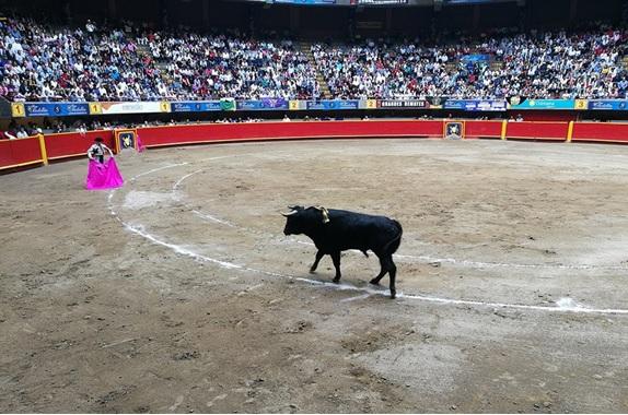 En Medellín… ¿Dónde quedó el toro bravo y bien presentado?
