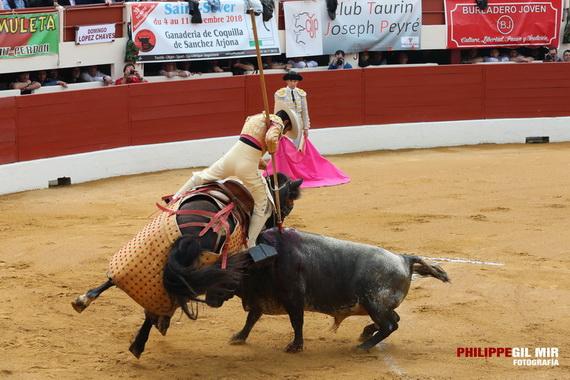 En Vic-Fezensac… Descastado concurso santacolomenio en el que sobresale el toro de La Quinta