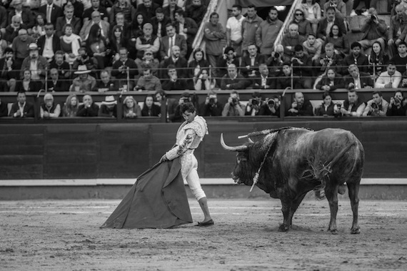 Lo dice Pepe Mata… Los toros 'elefantiásicos'