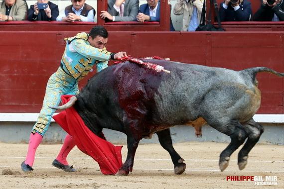 El análisis de Phillippe Gil Mir… Hacen justicia a Octavio Chacón y Javier Cortés en Las Ventas