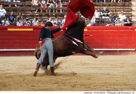 En Valencia… Destacan Gilio, Polope, Niño de Francia y Pirela