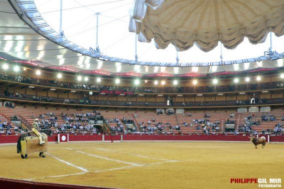 Se abren las puertas a la celebración de festejos taurinos en Aragón