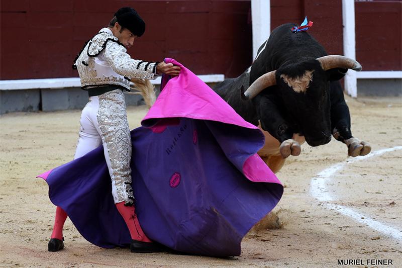 Robleño y Valdellán, los ganadores de los desafios ganaderos