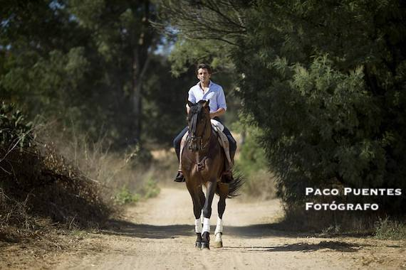 La entrevista de Antonio Lorca… Diego Ventura, prueba de fuego en Las Ventas para demostrar que es el mejor