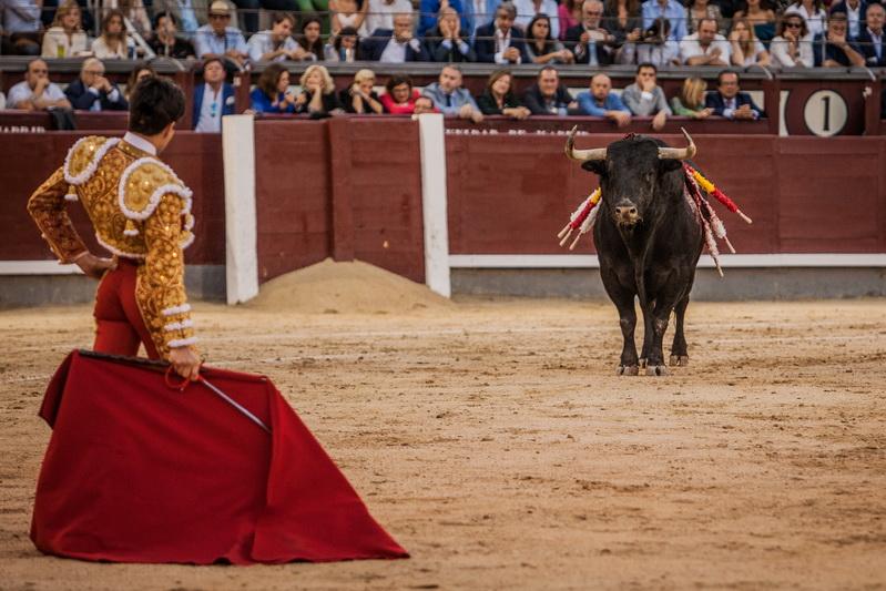 Lo comenta Miguel Ángel Yáñez… Las apariencias nos engañaron. Adolfos de aspecto, pero no de comportamiento