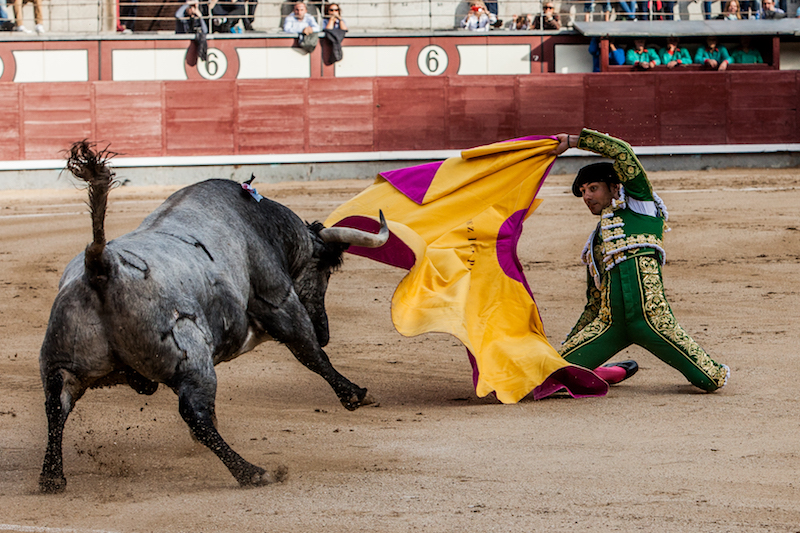 En Madrid… La torería de Rubén Pinar y Gómez del Pilar