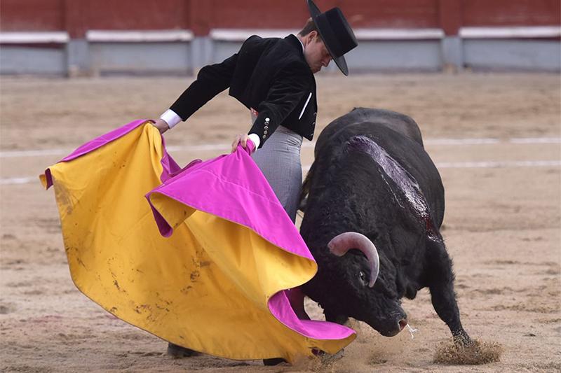 Más resultados de la Jornada Taurina en España de este sábado 10 de octubre