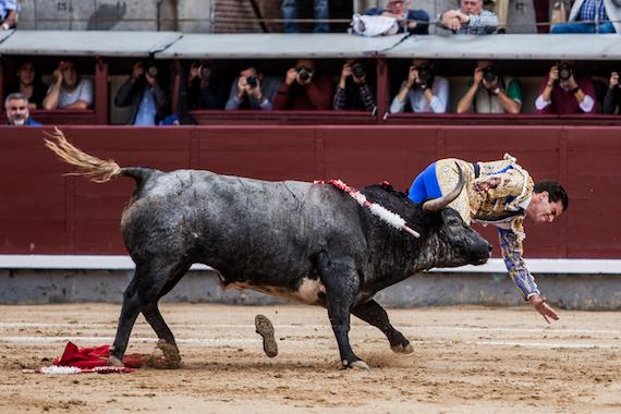 Lo comenta Miguel Ángel Yáñez… Fiasco ganadero en el cierre de temporada en Las Ventas