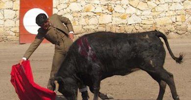 Francisco Martínez ha cerrado su preparación para su alternativa