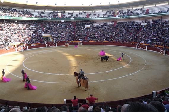 Tentadero público en Jaén