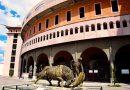Venta de entradas para la corrida benéfica en la Monumental de Aguascalientes