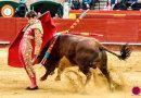 En Valencia… Tarde accidentada en una buena novillada de El Parralejo. San Román y Borja Collado, ambos al hospital