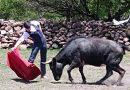 Sebastián Ibelles ha estado ensayando en la bisoña ganadería Candho