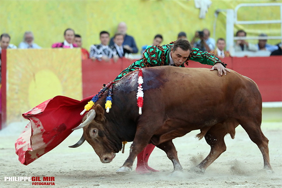 """Ha muerto """"Ingenioso"""", el toro indultado par Juan Bautista en Arles"""