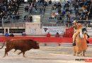 Dan a conocer las fechas y estructura de la Feria de Saint Martín de Crau para 2020
