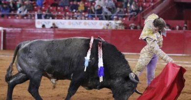 Galería del Maestro Sainos de la… tercera corrida de la actual Temporada Grande de la Monumental México