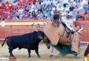 El Ayuntamiento de Cenicientos suspende su Feria del Toro
