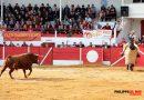 Corrida concurso de ganaderías en Aignan (Francia)