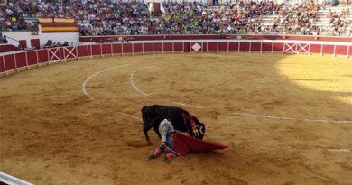 Chipé Producciones, nueva empresa de la plaza de toros de Cella
