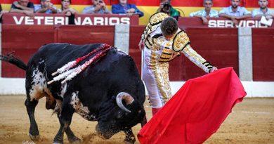 """Tomás Angulo: """"Pido a gritos Madrid, la necesito y creo que ya me toca"""""""