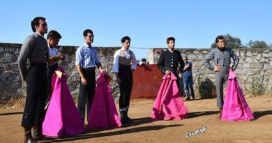 Las Raíces del Toreo ya tiene finalistas, conózcalos