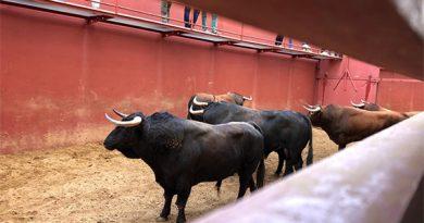 Orden de lidia de la corrida de Juan Pedro Domecq para la primera de abono en El Puerto de Santa María