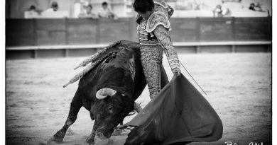 La mirada de Philippillo vió… La corrida mixta homenaje al toreo francés