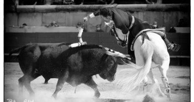 La mirada de Philippillo vió… La corrida de rejones en Nîmes