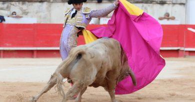 Sebastièn Castella se retira de los toros… podría ser temporalmente