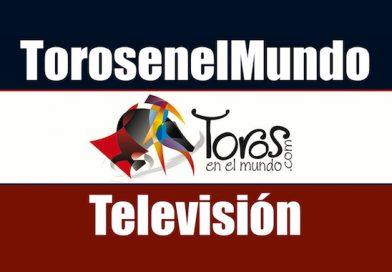 Entre a conocer las dos opciones para ver el programa TorosenelMundo-TV
