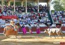 """La Asociación """"Toros y Peñas"""" de Orthez organizará una corrida de toros para el 14 de julio"""