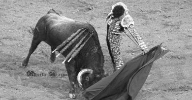 En Vistalegre… Un comienzo accidentado en la Feria de San Isidro