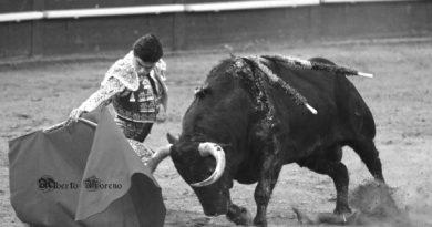 Desde el objetivo de Alberto Moreno… Corrida de toros de Juan Pedro Domecq en Vistalegre