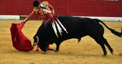 Más resultados de la Jornada Taurina en España del domingo 16 de mayo