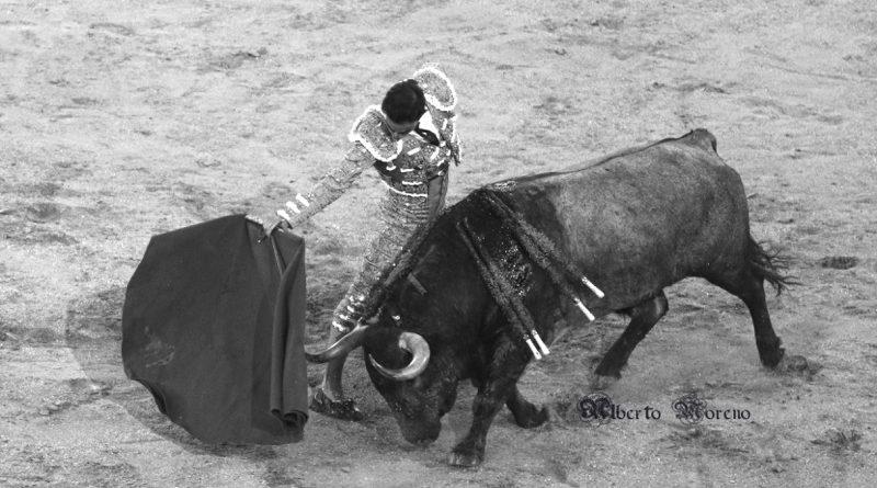 Sergio Serrano en Las Ventas