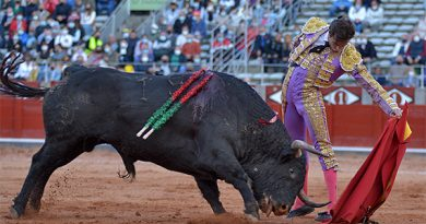 En Salamanca… El Juli y Alejandro Marcos cortan un trofeo
